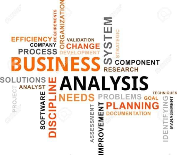 Portal CFO Business Analysis